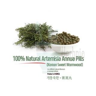 Natural Artemisia Annua Linne Pills 5oz