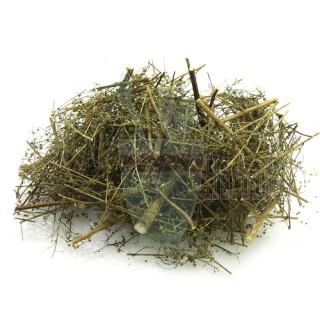 Artemisia Annua (Sweet Wormwood) 80g