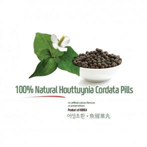Natural Houttuynia Cordata Pills 5oz