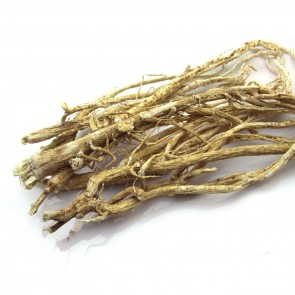 6 yrs Astragalus Root (Milkvetch)