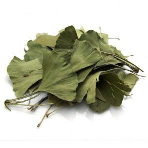 Ginko Biloba Leaf