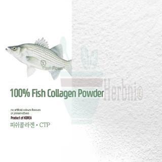 한국산l 피쉬 콜라겐 가루