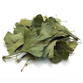 한국산l 말린 은행잎