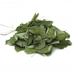 Barrenwort (Horny Goat Weed/Epipmedium) Loose Leaf