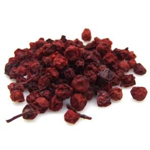 Schizandra Berry (Maximowiczia)